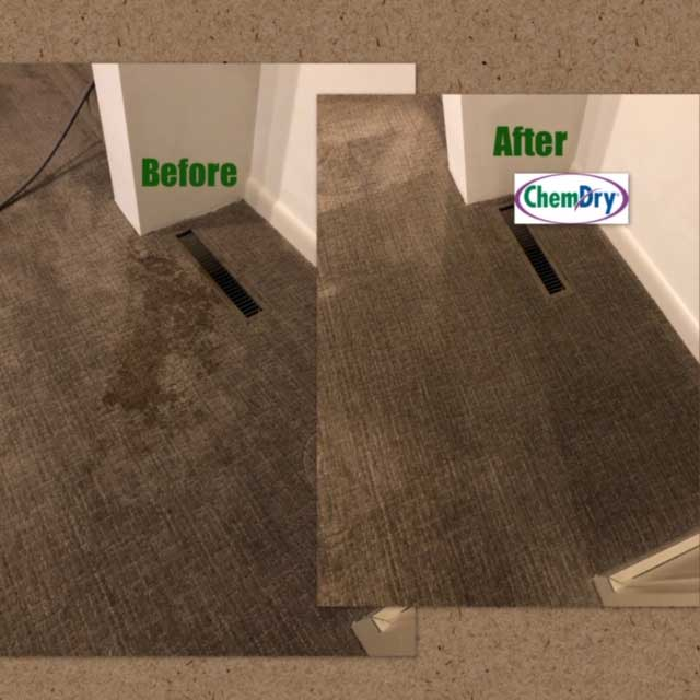 Carpet Cleaning Carmel, IN